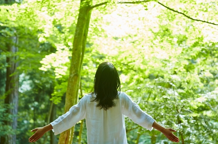 なぜ森の中の時間が癒しにつながるの?