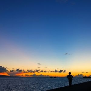ここでしかできない体験をしよう。ナイトツアーにおすすめの離島4選
