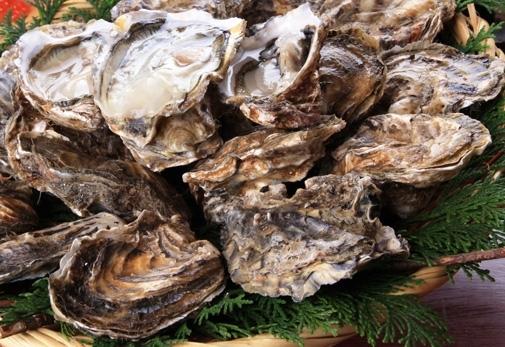 女子会におすすめなポイント②通年楽しめる牡蠣