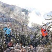 福井県池田町で冬を満喫! 白銀の森を飛ぶジップライン&露天風呂で温まろう