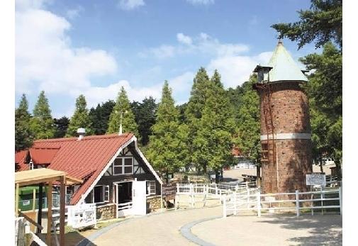 乗馬体験ができるおすすめスポット④神戸市立六甲山牧場