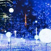 11月からキラキラ 東京・大阪のイルミネーションイベントへ