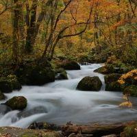 秋の旅行で立ち寄りたい!東北のおすすめ紅葉スポット4選