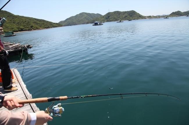 アオアヲ ナルト リゾート「ウチノ海の筏で楽しむ絶景BBQ&Fishing!」