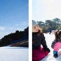 冬は外で雪遊び!六甲山スノーパーク ~11月16日(土)関西エリア最速オープン
