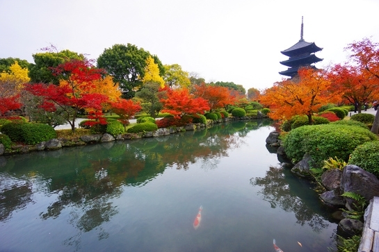京都の秋を満喫できる「寺社特別早朝拝観宿泊プラン」