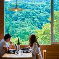箱根旅行で行きたいお店。絶景広がる「箱根自然薯の森 山薬」で自然薯料理を堪能