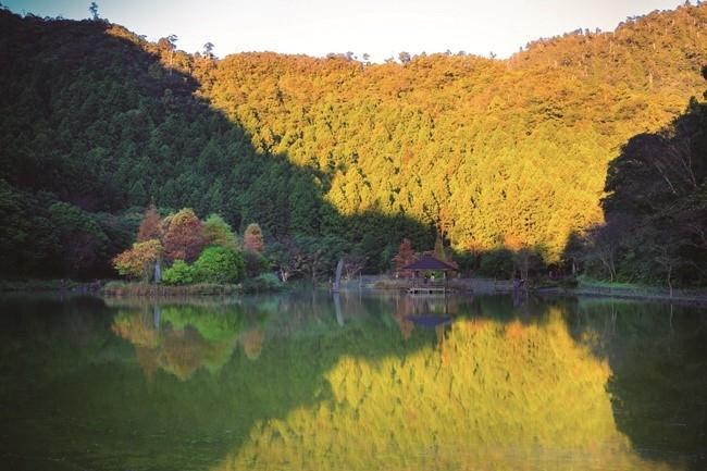 台北から最も近い秘境「馬告國家公園」は、避暑地としても大人気。