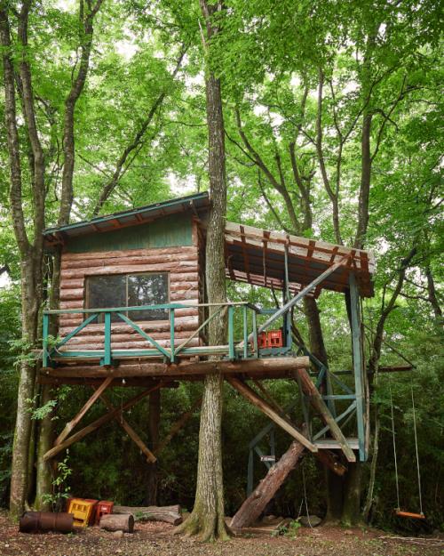 まるで秘密基地。木々に埋もれる大人のツリーハウス