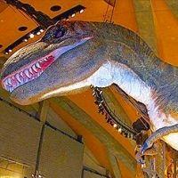 恐竜がダイナミック!地球とヒトの歴史を学べる「自然史博物館」とは