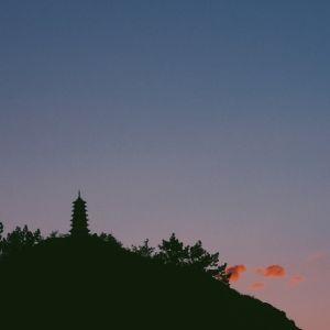 特別な体験で今年を締めくくろう。除夜の鐘がつける大阪府のお寺4選