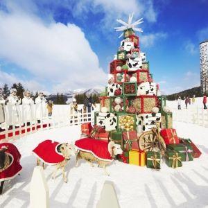フォトスポット満載! 星野リゾート リゾナーレで個性豊かな〇〇クリスマス