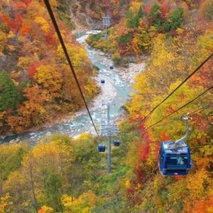 スキー場で楽しむ! 新潟・秋の空中散歩その0