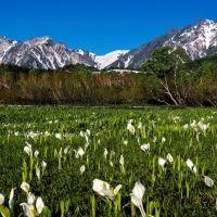 【長野】「コートヤード・バイ・マリオット 白馬」が提案! 4/29から地元在住のプロ写真家と巡る春の絶景フォトツアーが始動