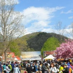 春フェスの季節到来! ロケーションが素晴らしいイベント5選