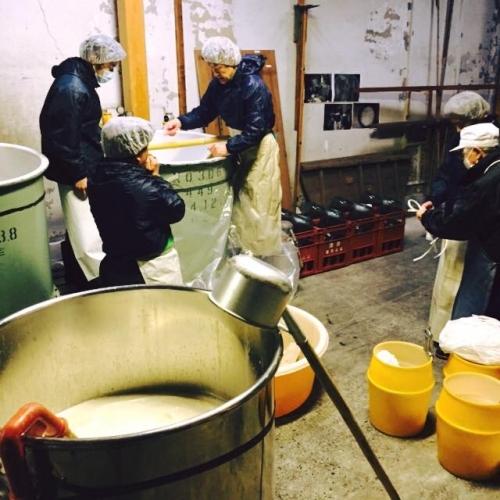 埼玉県の松岡醸造見学のご紹介