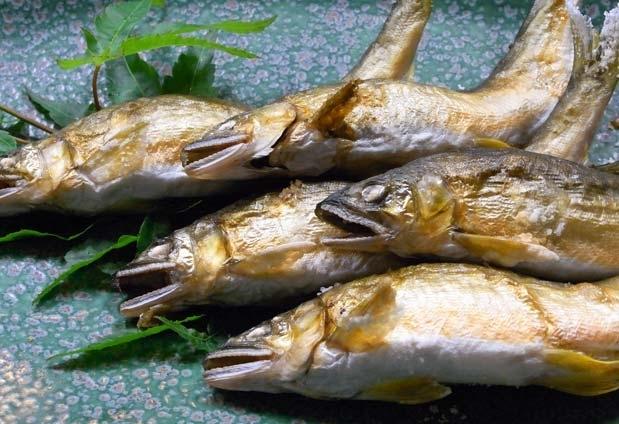 山形県にある天童温泉「松伯亭あづま荘」の魅力③メイン料理が選べるプランもある