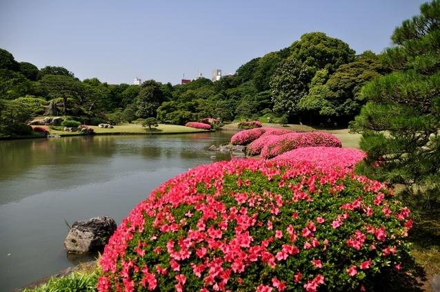 和歌山の景勝を表現した、江戸の二大庭園のひとつ