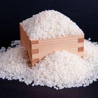 岐阜「草野さん家の元気米」をお取り寄せ!噛むほどに旨味と甘味が溢れ出す