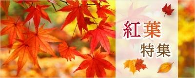 全国でもみじ狩り♪秋ならでは絶景「紅葉」スポット特集